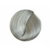 CENTURY, Крем-краска уход для волос 12.11, 100 мл